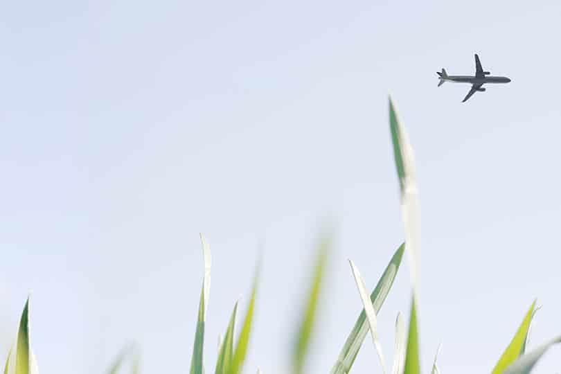 aire puro avion en el cielo